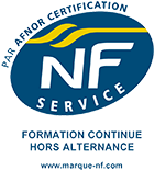 Logo NF Service Formation continue hors alternance (PNG)