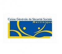 CGSS - INRS